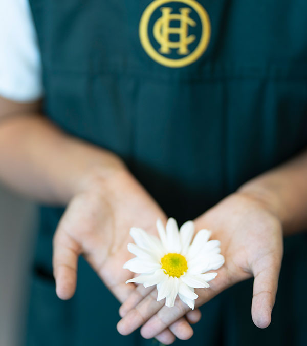 Close-up of a student in a Havergal tunic holding a daisy in her two overlapping open hands.